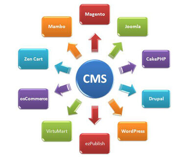 CMS Web Development Company in Jaipur