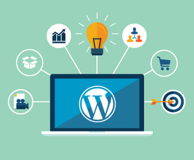 Wordpress Development Company in Hyderabad
